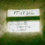 vitrail_marie